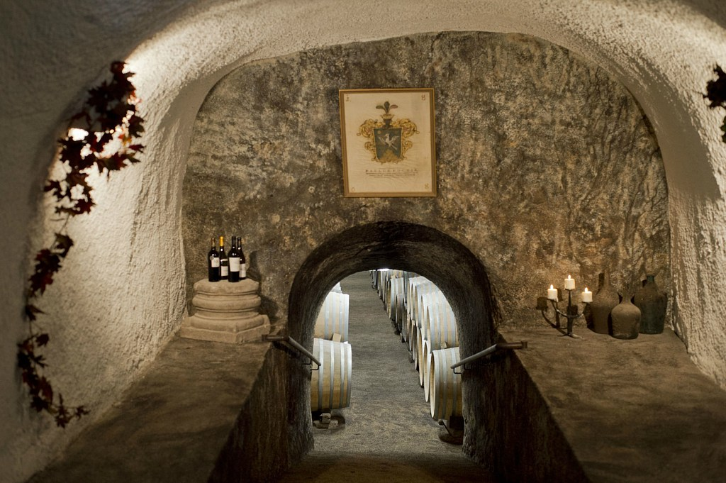 Pathway of the Cellar